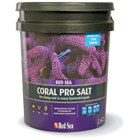Red Sea Fish Pharm ARE11230 Coral Pro Marine Salt for Aquarium, 175-Gallon by Red Sea
