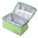 Weite Storage Bag, 4 Colors Large Polyester Package with Zipper, Portable Insulated Cooler Collapsible Lunch Bag Storage Package for Picnic Outdoor Activities, Built-in Aluminum Foil (Green)