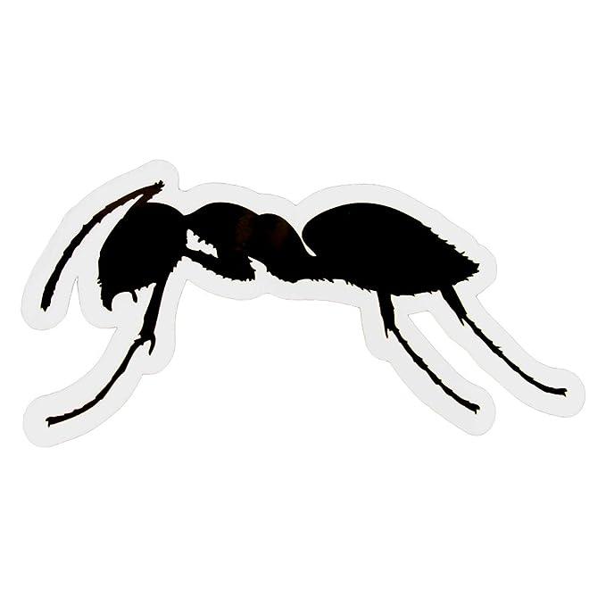 Ants Unique Ushuaia Fourmi Autocollant Ibiza Noir Grand Taille THTwr