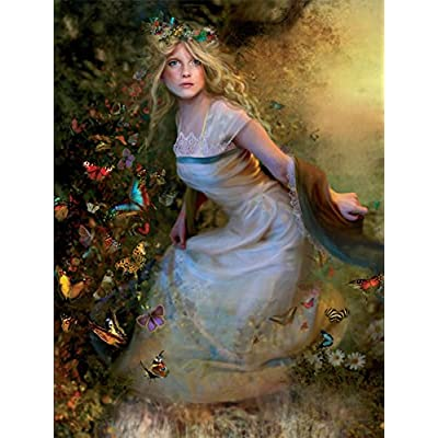 Fairyland Summer Dancer Jigsaw Puzzle: Toys & Games