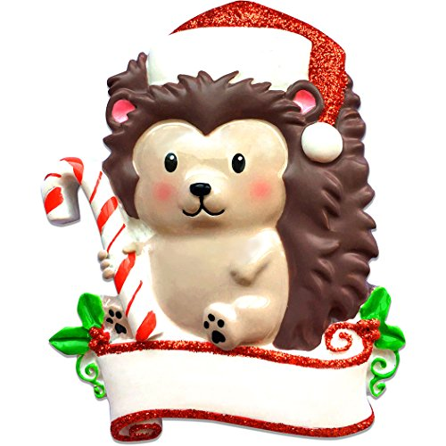 Personalized Hedgehog Character Christmas Ornament - Figure with Glitter Hat Candy Cane - Fun Quill Spike Holiday Baby Tradition Grand-Kid Love Toddler First 1st Nursery - Free Customization by Elves ()