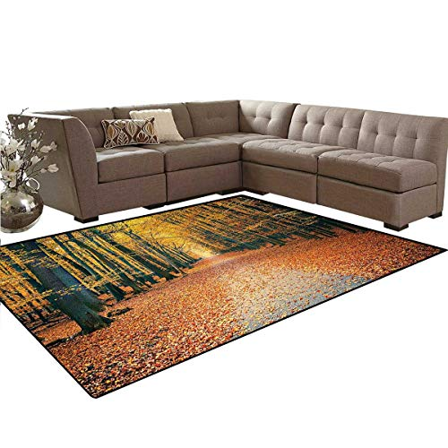 Forest,Rug,Romantic Autumn Alley in The Woods Foliage Scenics Park Forest Image,Home Decor Floor Carpet,Yellow Orange Slate Blue,6'6