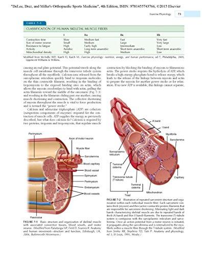 DeLee & Drez's Orthopaedic Sports Medicine: 2-Volume Set, 4e (DeLee, DeLee and Drez's Orthopaedic Sports Medicine)