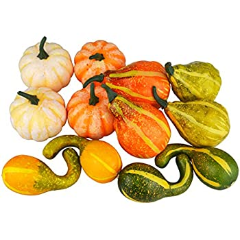 JEDFORE 12Pcs Lifelike Simulation Realistic Mixture of Artificial Pumpkins Fake Vegetable Fruit for Festival Halloween Thanksgiving Fall Harvest Home Decoration