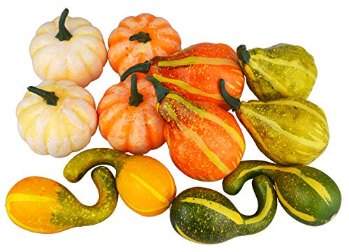 Pumpkins And Gourds - JEDFORE 12Pcs Lifelike Simulation Realistic Mixture of Artificial Pumpkins Fake Vegetable Fruit for Home Decoration