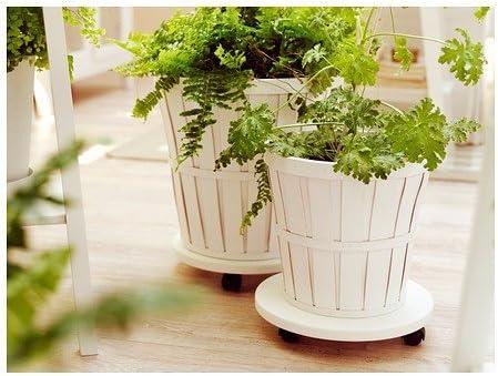 Ikea lantliv – Plantas Mover blanco – 30 cm: Amazon.es: Jardín