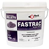 Fast Acting Rodent Rat Mouse Pellet Bait Rat Mouse Killer 121 Fastrac Place Pacs