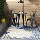 Nourison Aloha ALH05 Indoor/Outdoor Floral Area Rug