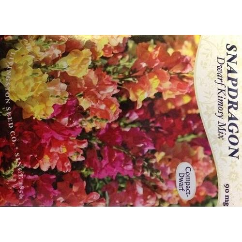 Dwarf Kimosy Mix Snapdragon Seeds - 90 Milligrams