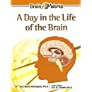 A Day in the Life of the Brain (Brain Works)