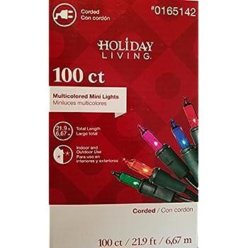 3965cee3f46 Amazon.com   Holiday Living 100 Count Christmas Mini Lights