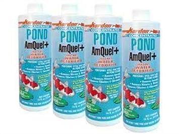 Kordon # 30016 Pond Amquel Plus para Acuario, 16-Ounce: Amazon.es: Productos para mascotas