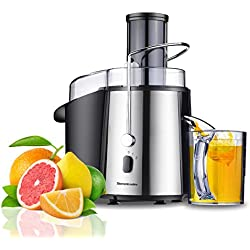 Homeleader Juicer Juice Extractor Wide Mouth Centrifugal Juicer,2 Speed Juicer Machine for Fruits and Vegetable,Stainless Steel,700 Watt