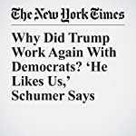 Why Did Trump Work Again With Democrats? 'He Likes Us,' Schumer Says | Maggie Haberman,Glenn Thrush