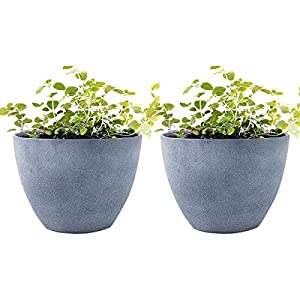"Flower Pot Garden Planters 12"" - 2 Pack Outdoor Indoor, Unbreakable Resin Plant Containers with Drain Hole, Grey 19"