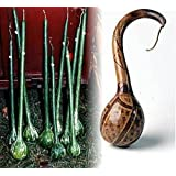 Large Fruited Dipper Gourd 10 Seeds - Craft Project!