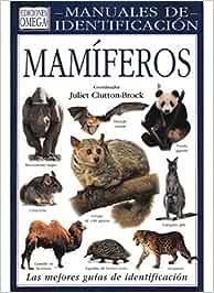 MAMIFEROS. MANUAL DE IDENTIFICACION GUIAS DEL NATURALISTA-MAMIFEROS: Amazon.es: CLUTTON-BRACK, JULIET: Libros