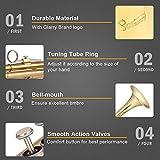 GLARRY Standard Trumpet Brass Gold Bb Trumpet for