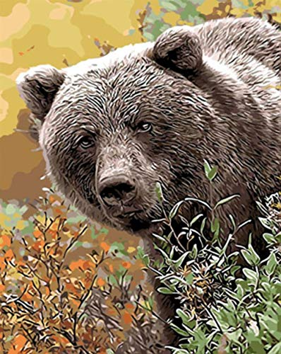 Blankid Natural Animals Oil Painting Drawing by Numbers Hand Paint Home Decoration Coloring Pictures Paint by Numbers Room Gift 40X50Cm (Frameless) ()
