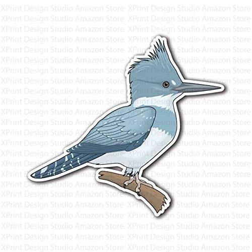 kingfisher-bird-on-branch-sticker