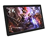 EleDuino Portable Gaming Monitor, 10.1 Inch 2K Resolution IPS QHD Lcd Display With Dual Hdmi Input,USB Powered for XBOX ONE S, XBOX ONE, PS4, PS3, Xbox 360, Raspberry Pi,Mini PC,FPV