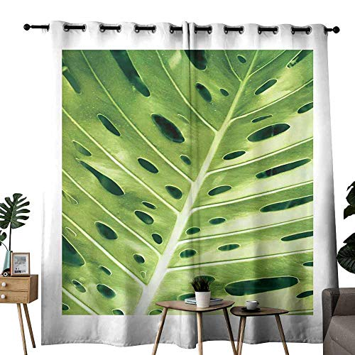 - duommhome Curtain for Kids Leaves of Plants Illuminated The Sun -4 Darkening and Thermal Insulating W108 x L84