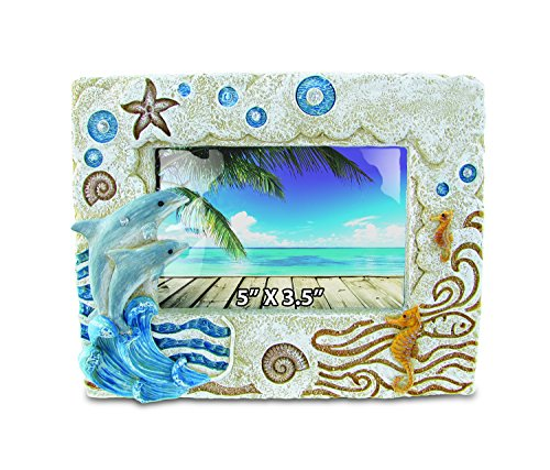 Puzzled Dolphin Nautical Stone Frames