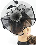 Myjoyday Fascinators Hat for Women Tea Party Headband Kentucky Derby Wedding Cocktail Flower Mesh Feathers Hair Clip (Black & White)