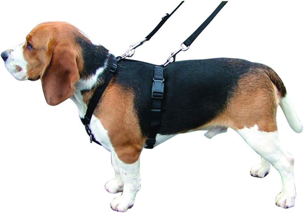 Kumfi Canine Kumfi - Arnés de Control Completo, Talla M: Amazon.es ...