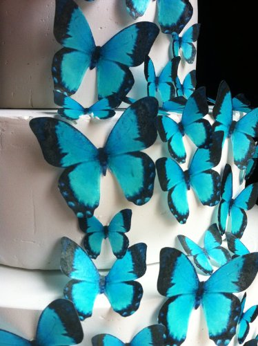 Edible Butterflies - Assorted Set of 30 Turquoise - Cake Decorations, Cupcake Topper by Sugar Robot Inc. (Image #1)