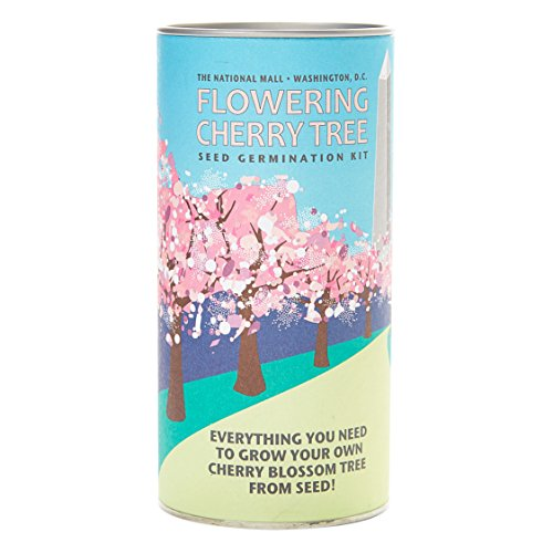 Flowering Cherry (Washington Design) | Tree Seed Grow Kit | The Jonsteen Company