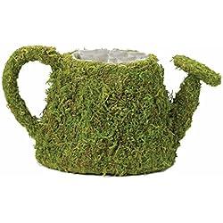 Lillian Rose Moss Watering Can Flower Basket Wedding Decor
