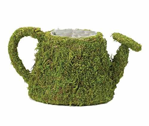 Lillian Rose Moss Watering Can Flower Basket Wedding Decor