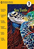 Sea Turtle, Wendy Perkins, 162243014X