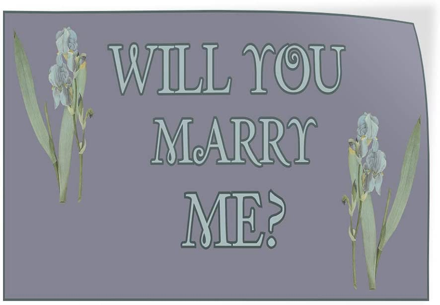 Decal Sticker Multiple Sizes Will You Marry Me Grey White Lifestyle Will You Marry Me Outdoor Store Sign Grey 14inx10in Set of 10