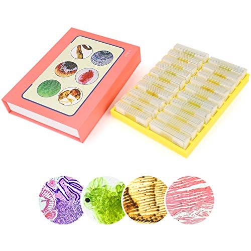 100Pcs Prepared Microscope Slides Set Variety of Slides Types Professional Grade Specimens for Biology Class Education and Student Kids Homeschool Use with Plastic Storage Box and Manual List