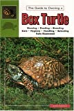The Guide To Owning A Box Turtle