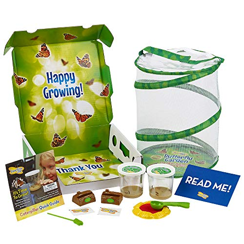 Top 10 recommendation insect lore butterfly garden with voucher