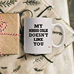Sarcastic Mug - Funny Team Cup Coffee Mugs Border Collie Doesnt Like You Best | Thoughtful T-Shirt Gift 9