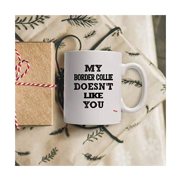 Sarcastic Mug - Funny Team Cup Coffee Mugs Border Collie Doesnt Like You Best | Thoughtful T-Shirt Gift 4