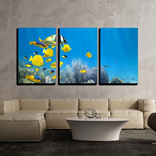 wall26 - 3 Piece Canvas Wall Art - Underwater Coral Reef Scenery with Colorful School of Fish - Modern Home Decor Stretched and Framed Ready to Hang - 24