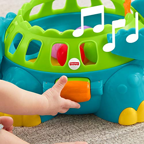 51AuIJyGl1L - Fisher-Price Go Baby Go Poppity-Pop Musical Dino