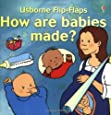 How Are Babies Made? (Flip Flaps Series)