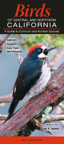 Birds of Central & Northern California: A Guide to Common & Notable Species (Common and Notable ()