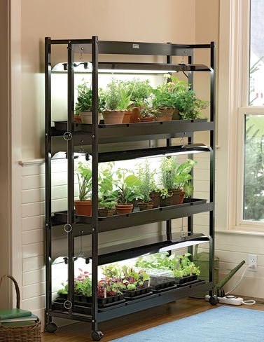Indoor Grow Light, 3-Tier Stand SunLite Light Garden With Plant Trays by Gardener's Supply Company