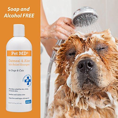 Dog Md Plus Shampoo Reviews