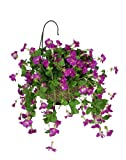 House of Silk Flowers Artificial Orchid Pink Petunia Hanging Basket