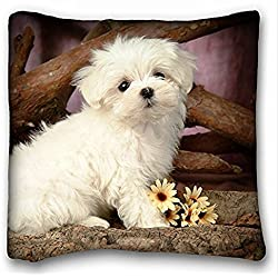 My Honey Pillow Pillow Cover Cute Maltese Puppies 18 x 18 Inches
