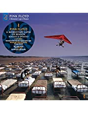 A Momentary Lapse Of Reason (Remixed & Updated 2019) (Vinyl)