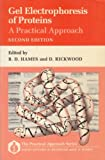 Gel Electrophoresis of Proteins : A Practical Approach, , 0199630755